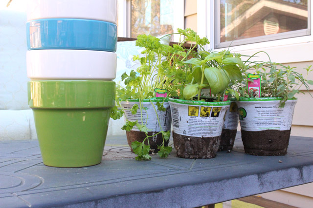 southern patio electric ceramic pots with basil, oregano, parsley and chives herbs