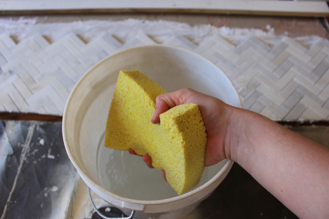 Sponge and Bucket for Cleanup