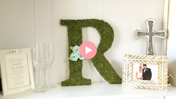 green moss covered r letter initial on white bookshelf
