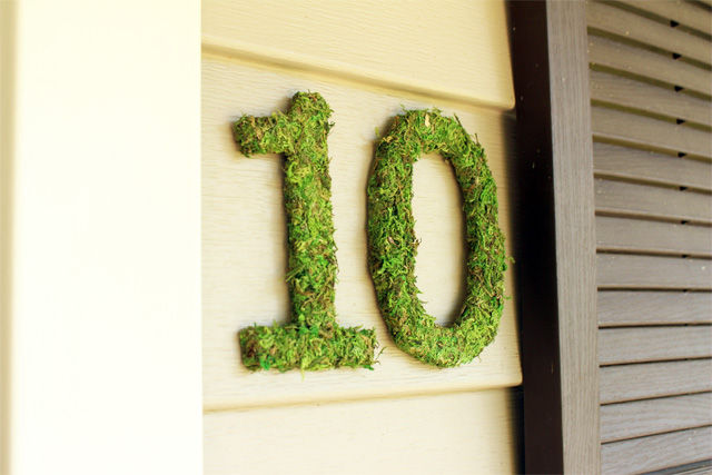 Completed Moss House Numbers Hanging on Front Porch