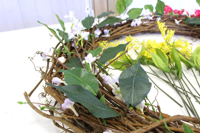 Ficus Leaves Spread Out on Grapevine Wreath