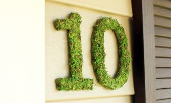 Moss Covered House Numbers on Front Porch