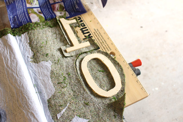 Moss Cut to Shape and Ready for Glue