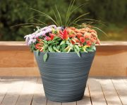How to Water Plants on Vacation Giveaway