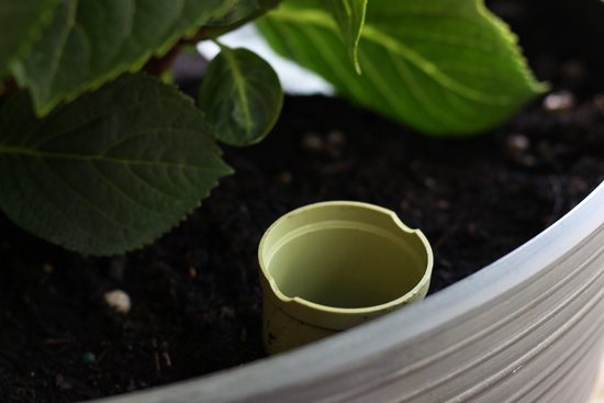 Self-Watering Insert Refill Tube in Potted Plant Container