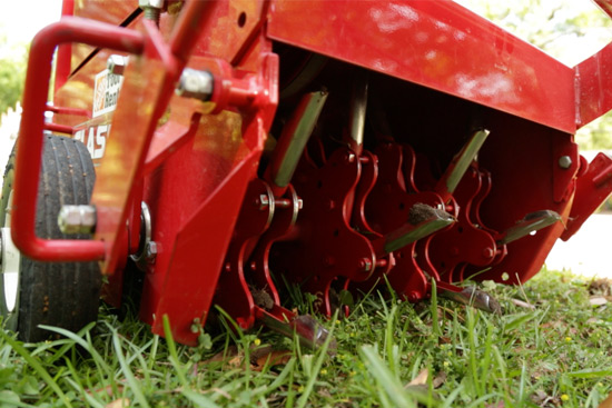 Red Rental Aerator Creating Holes in Grass