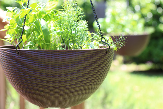 Brown Woven Hanging Planter with Herbs