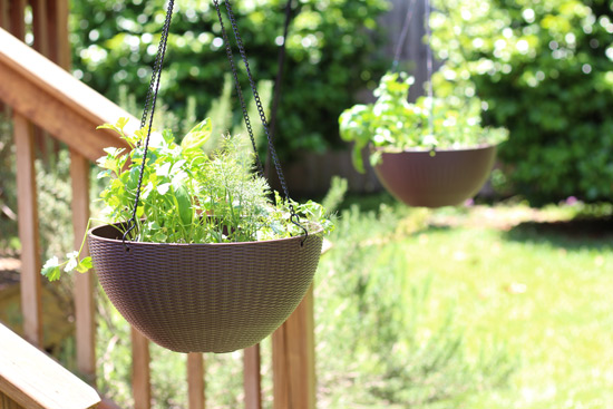 Hanging Herb Baskets by Deck Steps