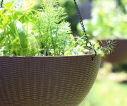 Hanging Herb Garden How To