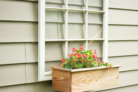 Red Begonias in Wood Planter Box Hanging on Window