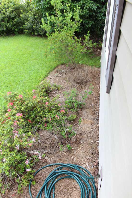 View of Flower Bed from Porch Before New Plants