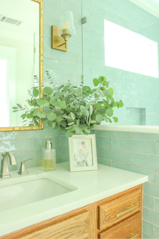 View Into Shower From Vanity with Eucalyptus
