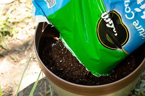 Adding MiracleGro Potting Soil to Planter