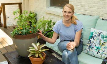 Chelsea Lipford Wolf on Deck with Small Bug-Repellent Container Garden